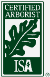 Certified Arborists Lain's Tree Service